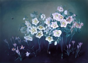 90110605_large_WHITE_CHRISTMAS_ROSE_Oil_on_canvas_61x86_cms_2002_copy